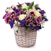get well flowers Vellmar